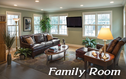 Family Room Remodeling Portfolio Photos